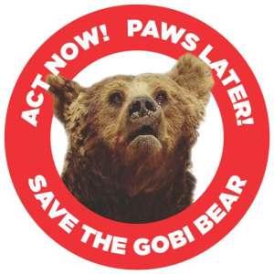 15130 Gobi Bear web friendly file size