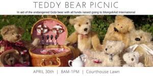 Broome Teddy bears picnic flyer (courtesy Katy Crawford)